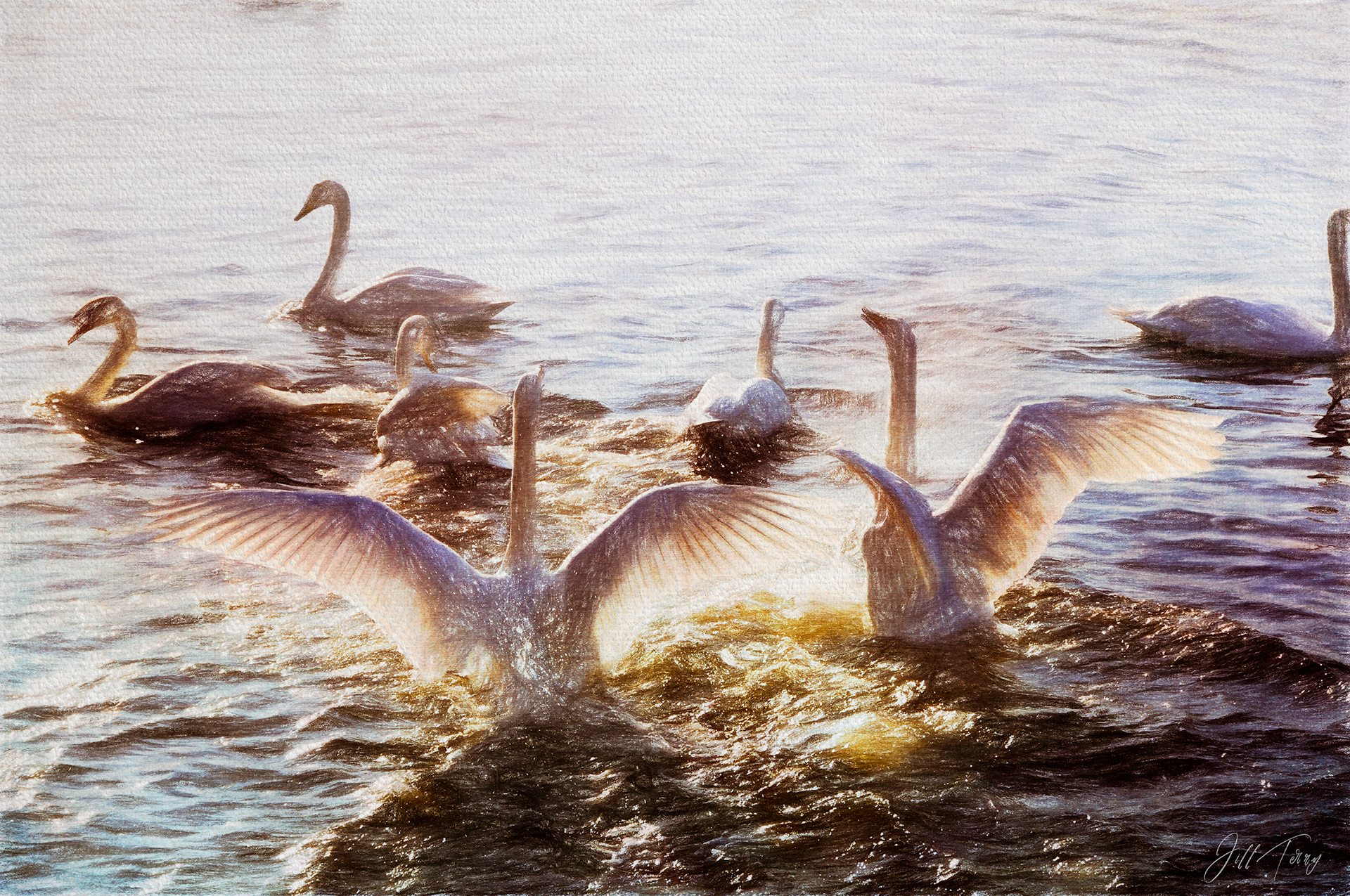 Swan Lake - a Painting of Swans
